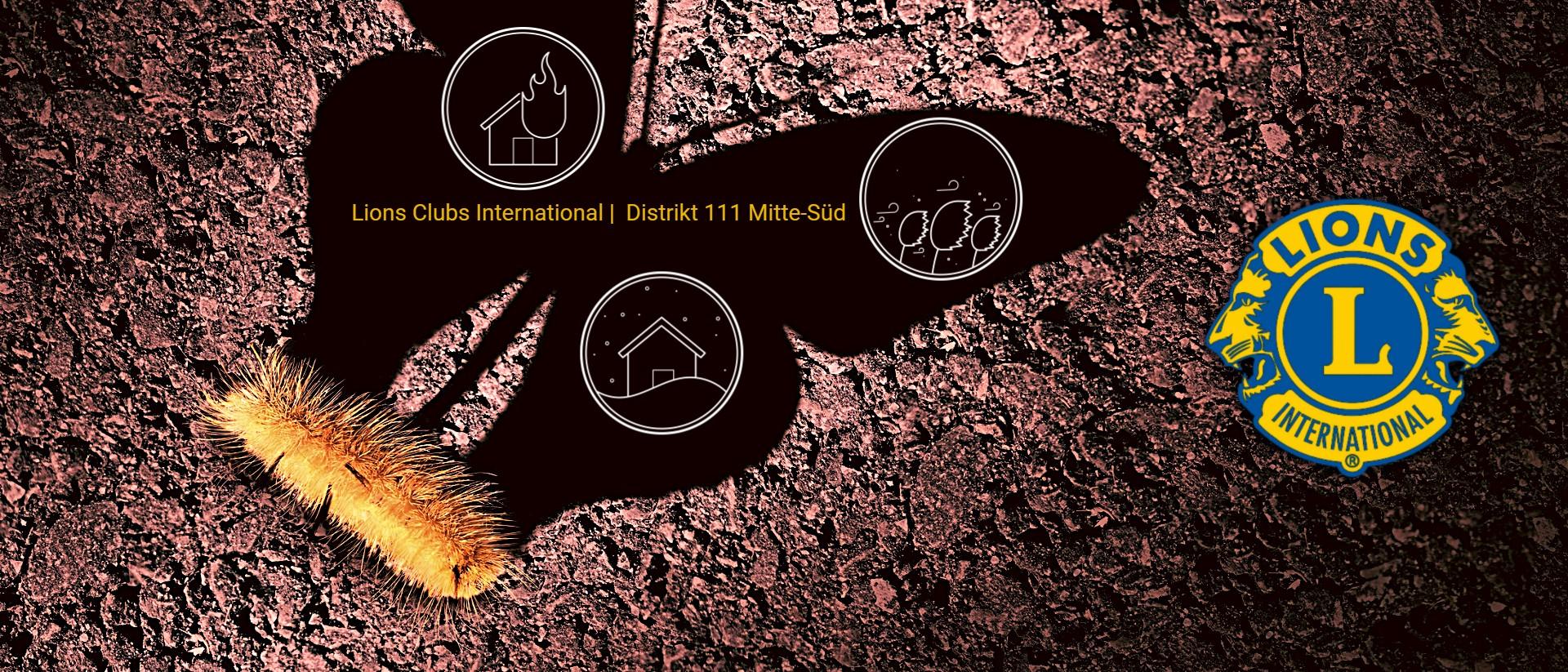 Schmetterlingslarve wirft einen Schmetterlingsschatten, Katastrophensymbole, Lions Logo